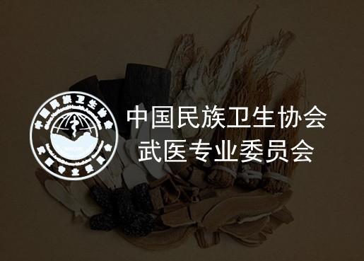 中国民族卫生协会武医专业委员会